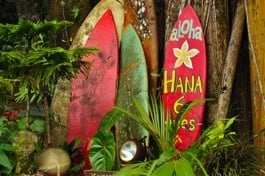 "Surfboards am ""Road to Hana"""